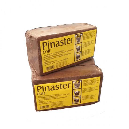 Brick de coco Platinum 8-9L Pinaster