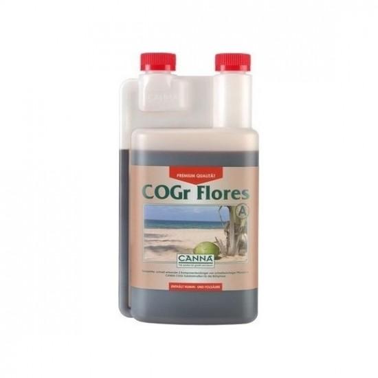 Cogr Flores A Canna
