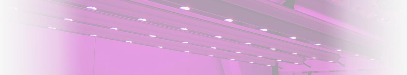 Lámparas Sodio y Halogenuros